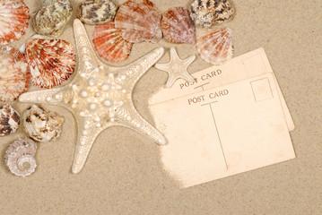 Seashore background postcards and starfish