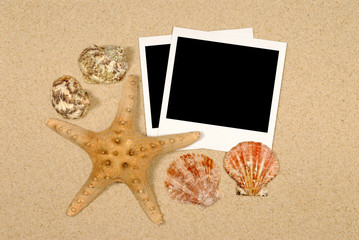 Seashore scene with starfish and polaroids