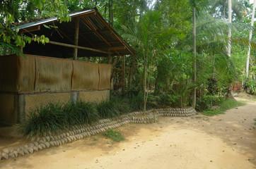house in the tropics,Sri Lanka
