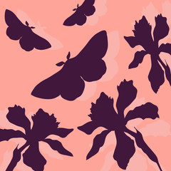 silhouettes of butterflies and narcissus