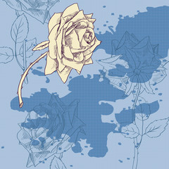 Vintage rose on blue background