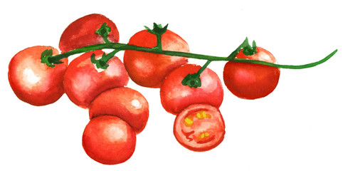 Ripe red watercolour cherry tomatoes on white background