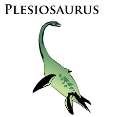 plesiosaurus dinosaur colored illustration