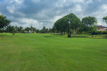 Golf course in Dominican republic. field of grass and coconut
