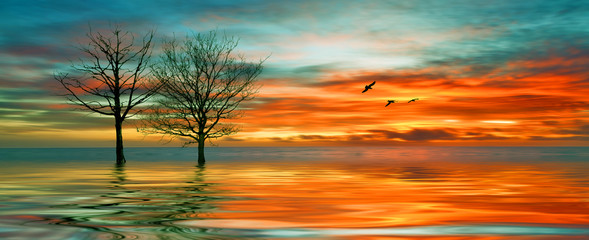 Beautiful landscape with birds