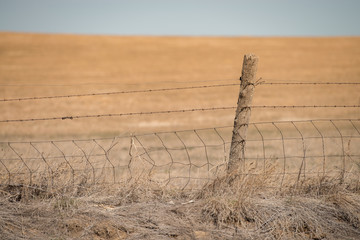 Barbed Wire Fence & Post on the Plains