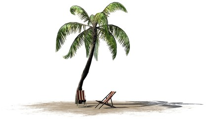 deck chairs under palm trees - isolated on white background