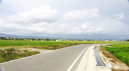 Carretera y canal en las plantaciones de arroz, Delta del Ebro