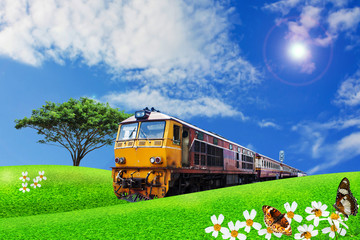 train passes through the green meadow