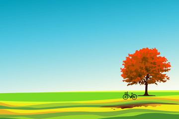 The big tree in autum season