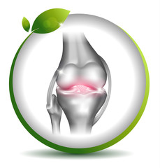 Normal knee joint symbol in the leaf circle