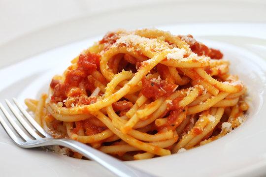 amatriciana, italian tomato sauce pasta
