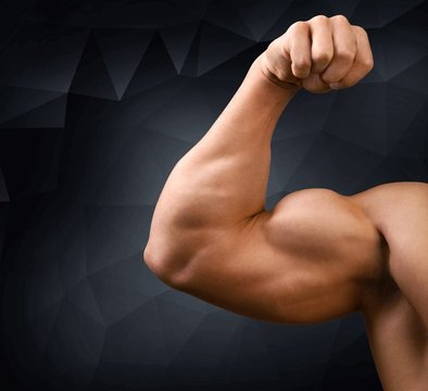 Body Building. Body builder bicep