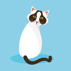 Cat design.