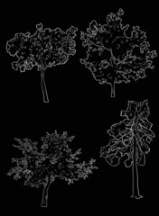 four tree sketches isolated on black