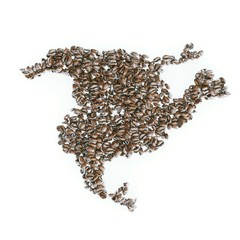 Map of North America made of roasted coffee beans