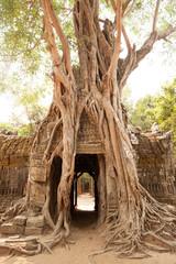Ta Som temple in Angkor Cambodia