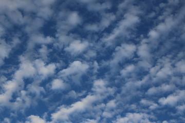 Blue sky, taken in Bregenz, Austria