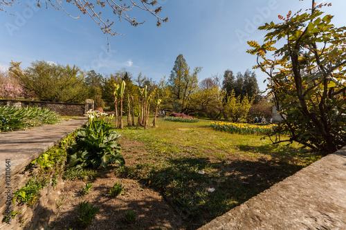 I giardini terrazzati, Villa Taranto, Verbania, Piemonte, Italia ...