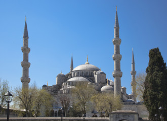 Blue Mosque in Istanbul spring day