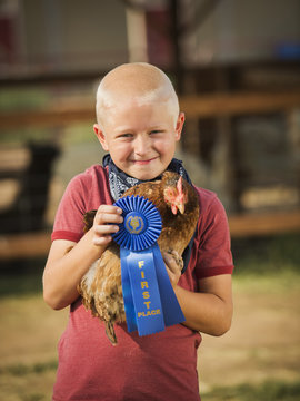 Caucasian boy with prize winning chicken on farm