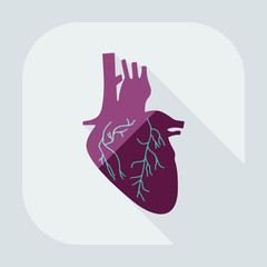 Flat modern design with shadow icons heart