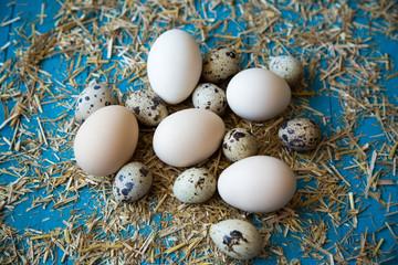 ahşap zeminde taze yumurtalar
