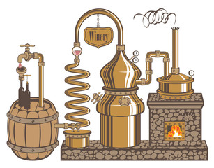 plant for the production of wine