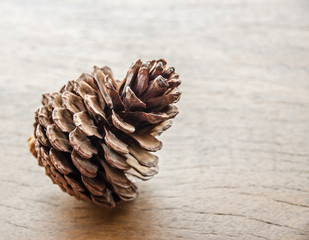dried pine cones at the table