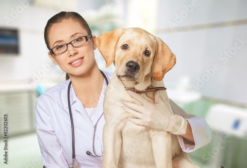 pet insurance cover spaying