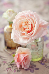 Delicate pink roses in a glass vase (vintage style)