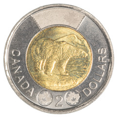 TORONTO, CANADA - FEBRUARY 20, 2015: Canada's two dollar coin is bimetallic, and shows a polar bear, a symbol of concern for the endangered environment.