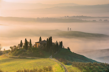 Foto op Aluminium Olijf Mist flowing in the green fields of Tuscany in the morning