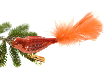 Chrismas decoration on white background