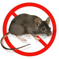 mammals exotic sale sign