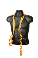 Male torso mannequin