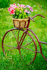 Decorative Vintage Model Old Bicycle Equipped Basket Flowers Gar