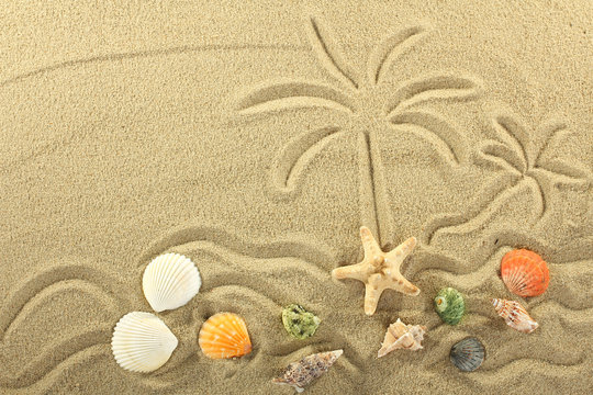 island in the ocean and palm trees painted on the sand