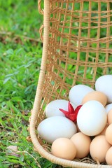 Vintage easter eggs and white eggs