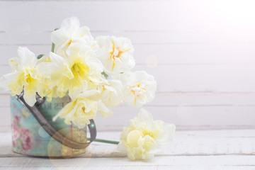 Background with fresh narcissus in bucket
