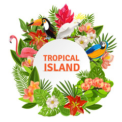 Tropical birs and flowers