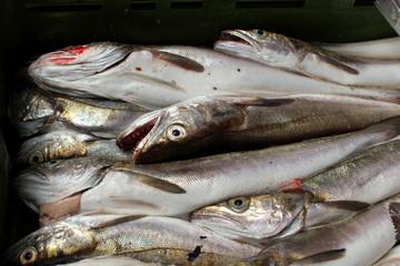 Sardinen und andere Fische in einer Kiste am Fischmarkt