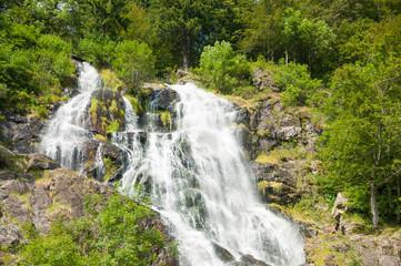 Wall Mural - Todtnauer Wasserfälle, Todtnau