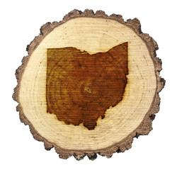 Slice of wood (shape of Ohio branded onto) .(series)