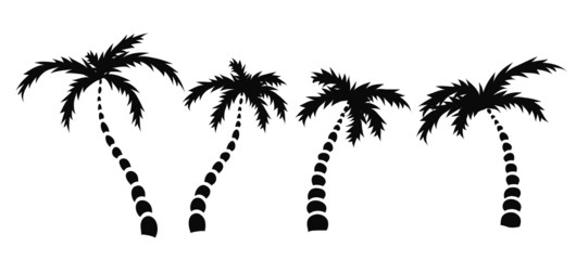 silhouettes of palm trees, vector