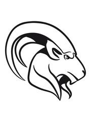 Capricorn horoscope symbol