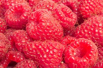Sweet red raspberries closeup background