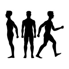 Collection  silhouettes of man front side Vector  isolated
