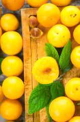 cherry-plum berry yellow