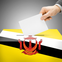 Ballot box painted into national flag - Brunei